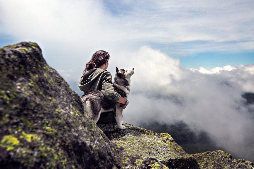 pourquoi assurer son chien